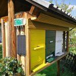 Natančno izmerimo težo čebelje kolonije